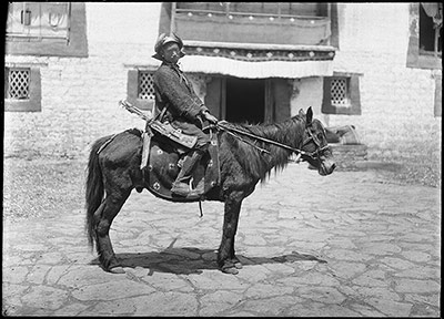 Cavalry soldier on horse