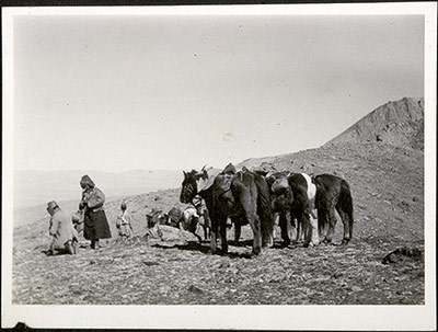 Horses and travellers resting