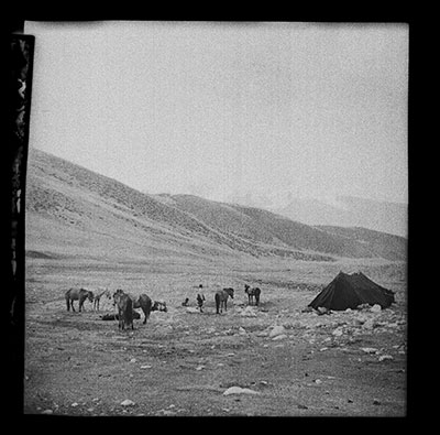 Black tent with men and ponies in Betsang