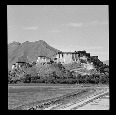 Potala from the north