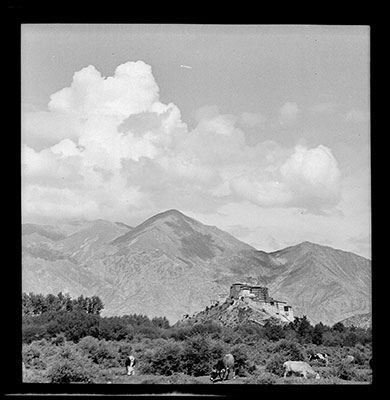 Potala from the west