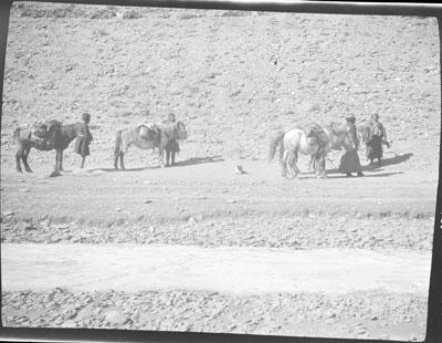 Road leading into Gyantse