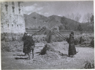 Winnowing grain in Lhasa